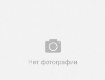 Фото 1019031 товара Постельное белье Viluta ранфорс Даша